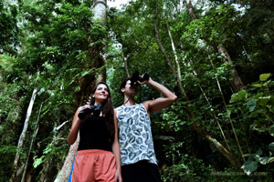El Nido Resorts Activities Lagen Island Forest Trail
